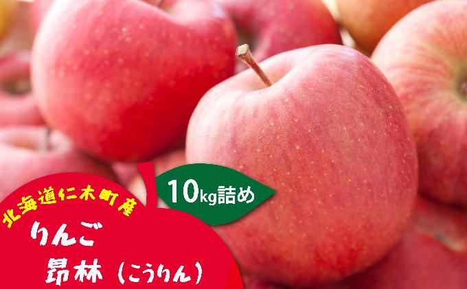 北海道仁木町産りんご【昂林】約10kg