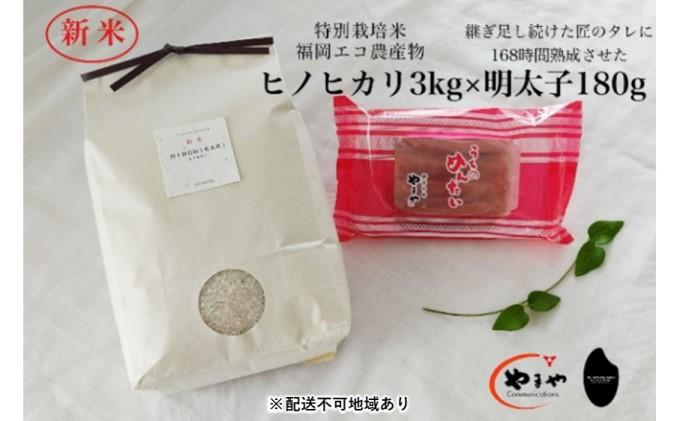 福岡のごはんセット『特別栽培米』農家直送 新米 ヒノヒカリ 3kg×やまや『うちのめんたい』180g【配送不可:離島】