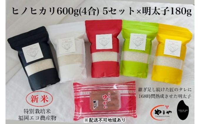 福岡のごはんセット『特別栽培米』農家直送 新米 ヒノヒカリ 600g(4合)× 5 × やまや『うちのめんたい』180g【配送不可:離島】