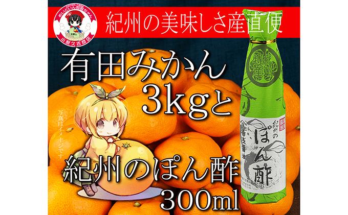 有田みかん3kgと醤油の老舗のぽん酢※クレジット限定