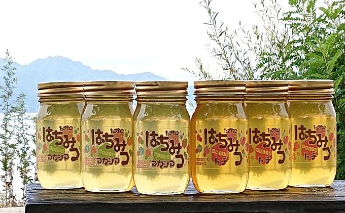 田沢湖産天然はちみつ500g×6本