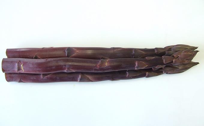 超貴重!丸亀産紫アスパラガス 約800g