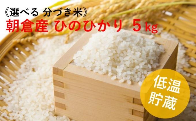 福岡県 朝倉市産のお米「ひのひかり」5kg(8分・5分・3分・玄米からお選びいただけます)