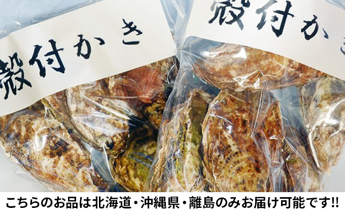 ●先行予約●山銀商店 殻付き牡蠣 レンジでチンセット 5個入×2袋