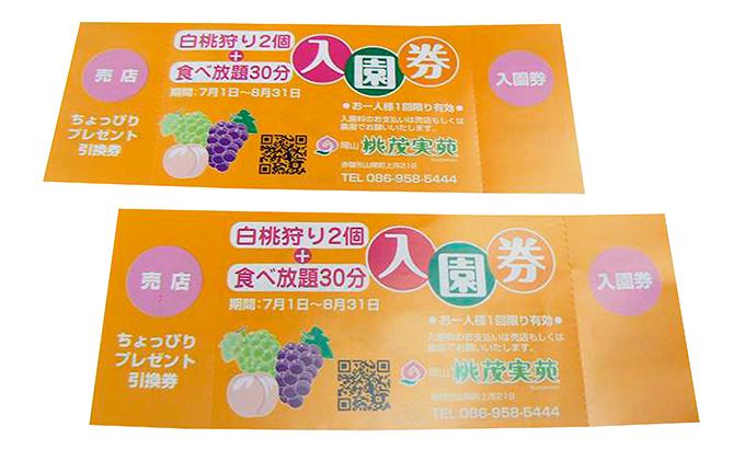 観光農園収穫体験チケット(ペア)