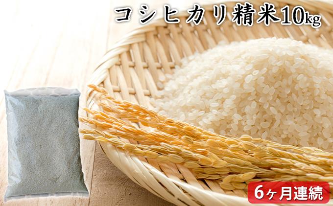 【定期6ヶ月連続】高島農場 コシヒカリ精米10キロ