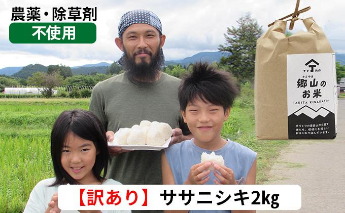 訳あり!2kg×1袋 農薬不使用のササニシキ(玄米)