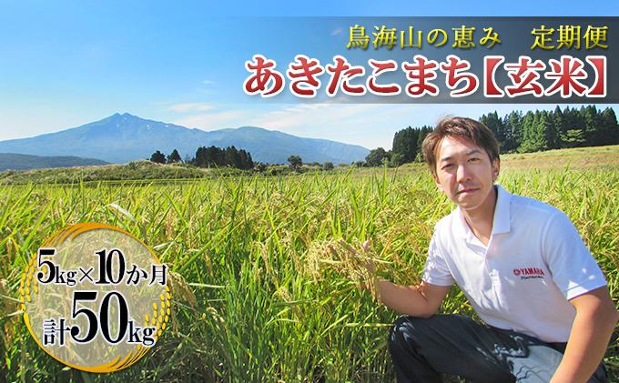 【定期便】5kg×10ヶ月 鳥海山の恵み 農家直送! あきたこまち(玄米)