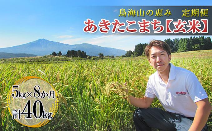 【定期便】5kg×8ヶ月 鳥海山の恵み 農家直送! あきたこまち(玄米)