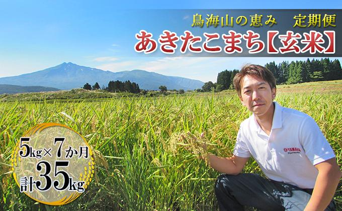 【定期便】5kg×7ヶ月 鳥海山の恵み 農家直送! あきたこまち(玄米)