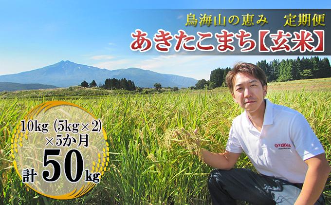 【定期便】10kg×5ヶ月 鳥海山の恵み 農家直送! あきたこまち(玄米・5kg×2袋)