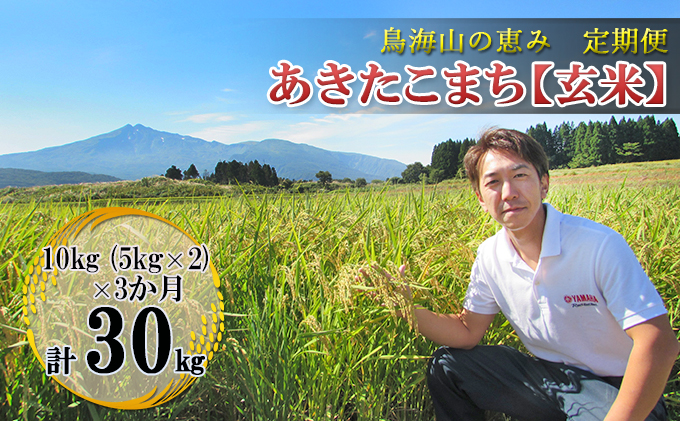 【定期便】10kg×3ヶ月 鳥海山の恵み 農家直送! あきたこまち(玄米・5kg×2袋)