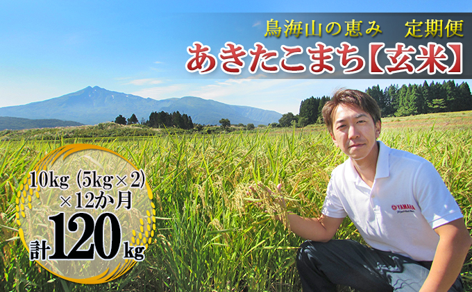 【定期便】10kg×12ヶ月 鳥海山の恵み 農家直送! あきたこまち(玄米・5kg×2袋)