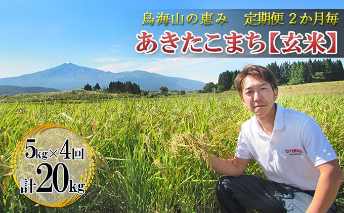 【定期便】2ヶ月ごとに5kg×4回 鳥海山の恵み 農家直送! あきたこまち(玄米・隔月)