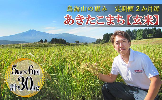 【定期便】2ヶ月ごとに5kg×6回 鳥海山の恵み 農家直送! あきたこまち(玄米・隔月)