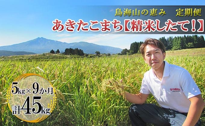【定期便】5kg×9ヶ月 鳥海山の恵み 農家直送! あきたこまち[精米 したて!]