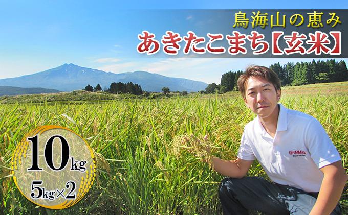 鳥海山の恵み 農家直送! あきたこまち 10kg(5kg×2袋 玄米)