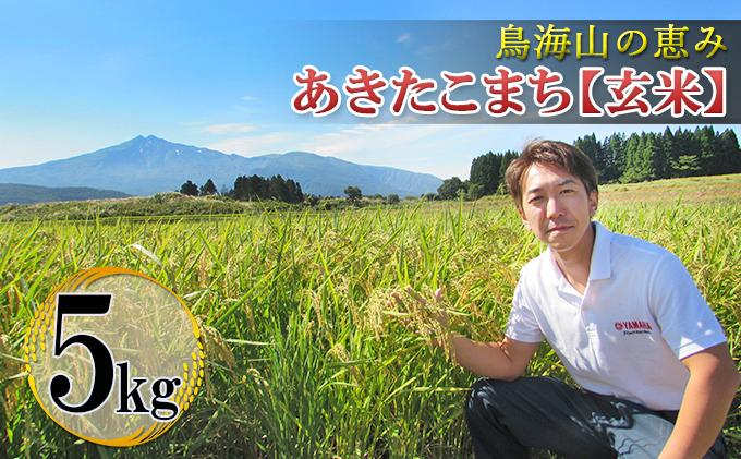 鳥海山の恵み 農家直送! あきたこまち 5kg(玄米)