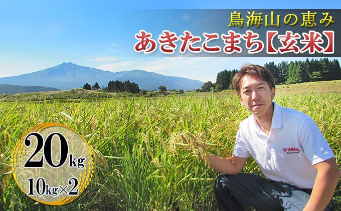鳥海山の恵み 農家直送! あきたこまち 20kg(10kg×2袋 玄米)