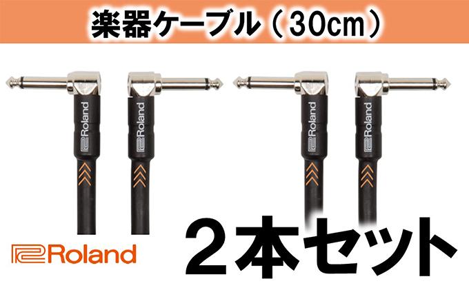 【Roland純正】楽器ケーブル 30cm/RIC-B1AA 2本セット【配送不可:離島】