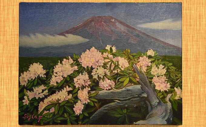 降矢組人先生の『富士山 お中道に咲くハクサンシャクナゲの花』