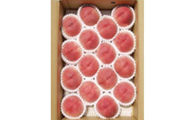 透過式光センサー川中島白桃 特秀5kg相当(15玉~18玉)1箱