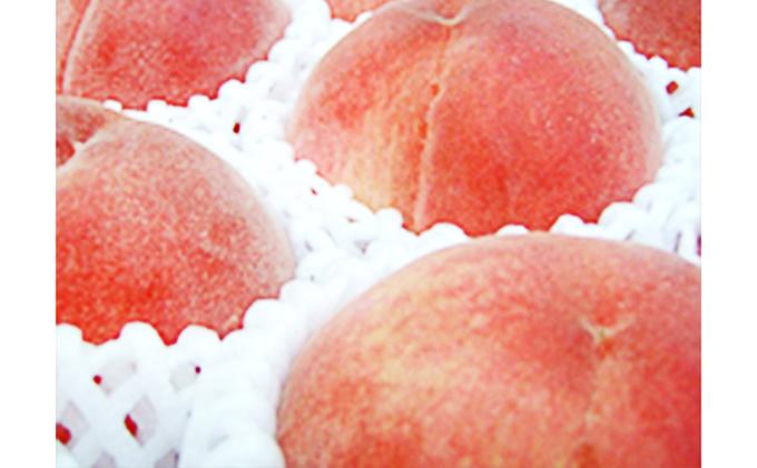 【R3年度出荷分先行予約】フルーツ王国山梨の桃(3kg)