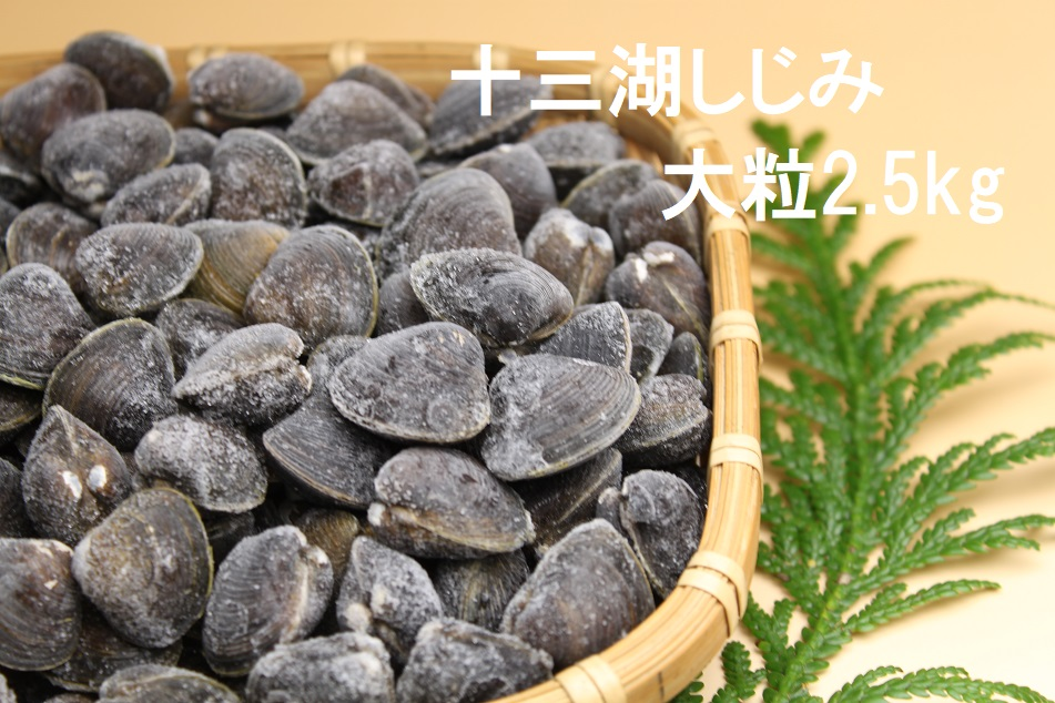 津軽十三湖産 大粒しじみ2.5kg(冷凍・砂抜き済)
