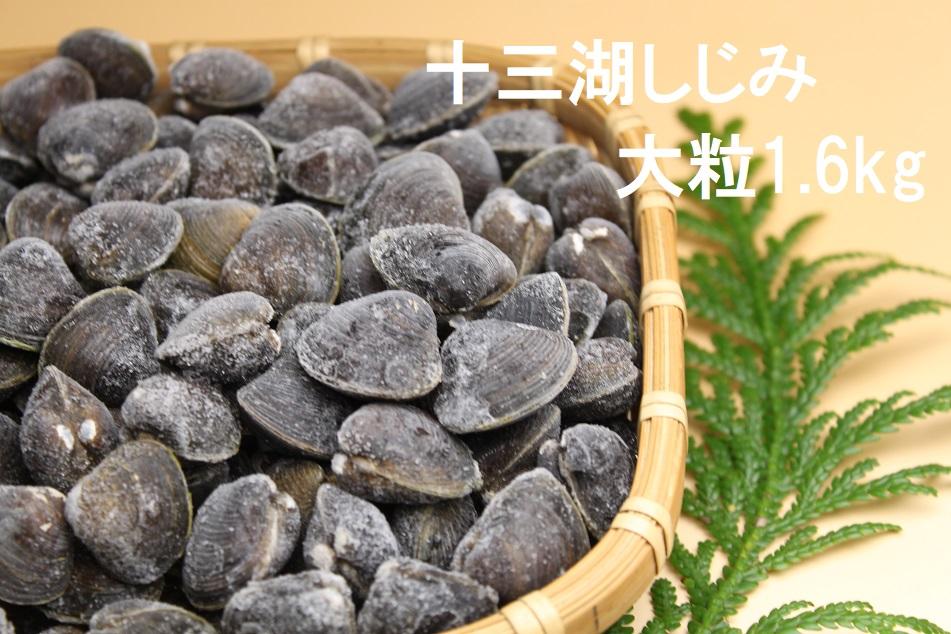 津軽十三湖産 大粒しじみ1.6kg (冷凍・砂抜き済)