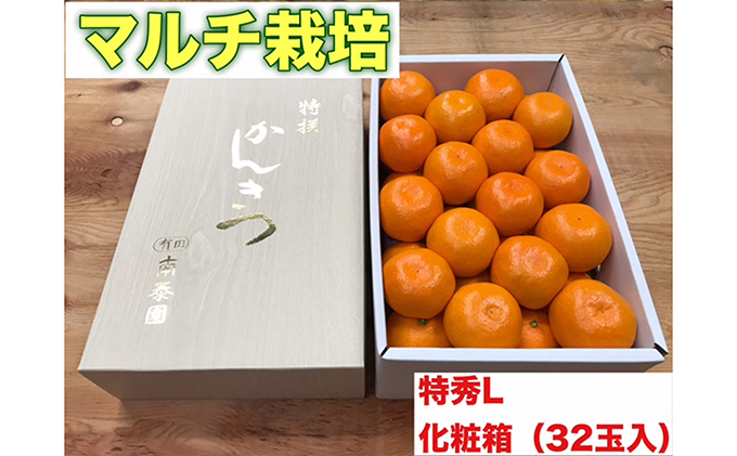 【マルチ栽培・有田みかん】化粧箱『特秀』Lサイズ32玉入