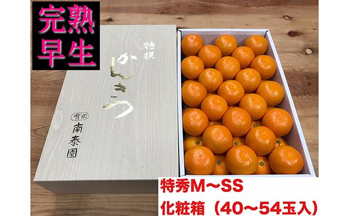 【完熟早生・有田みかん】化粧箱『特秀』約3kg(M~SSサイズおまかせ)