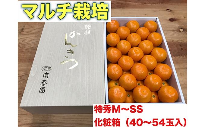 【マルチ栽培・有田みかん】化粧箱『特秀』約3kg(M~SSサイズおまかせ)