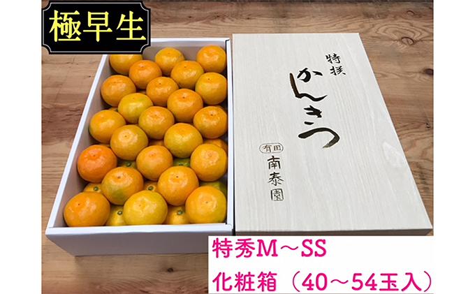 【極早生・有田みかん】化粧箱『特秀』約3kg(M~SSサイズおまかせ)