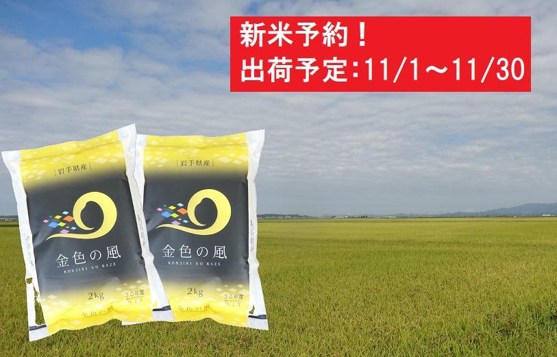 【新米予約】金色の風4kg(2kg×2袋)