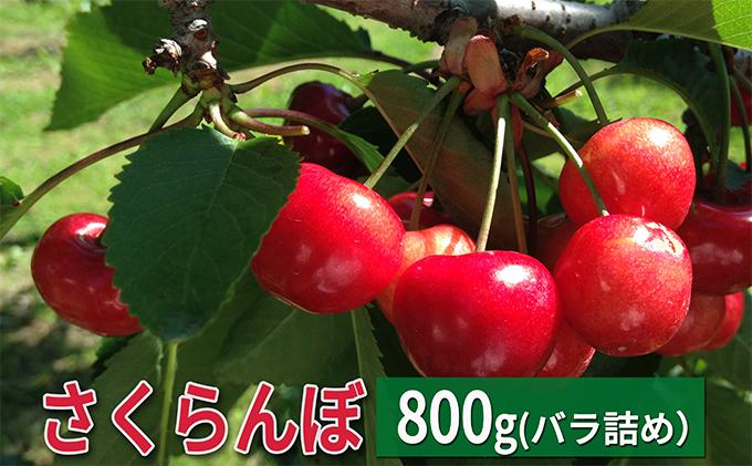 峠のふもと紅果園の大玉さくらんぼバラ詰め800g