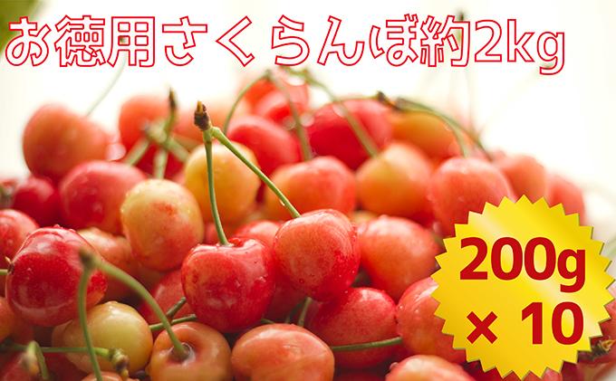 <仁木ファーム>北海道仁木町産ご自宅用さくらんぼ(徳用)約2kg