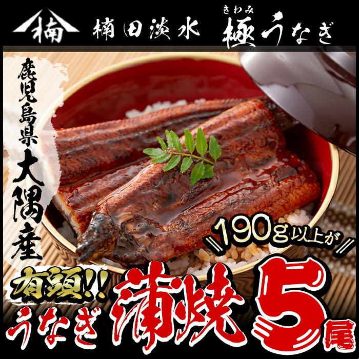 e0-003 楠田の極うなぎ蒲焼き 5尾(有頭190g以上×5)