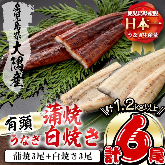 e0-004 楠田の極うなぎ蒲焼き・白焼き