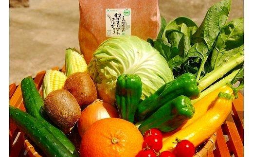 福津むなかた旬のお任せセットお米・野菜・果物9~10品[A4006]