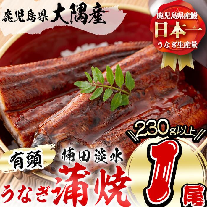 a0-007 楠田の極うなぎ蒲焼き超特大1