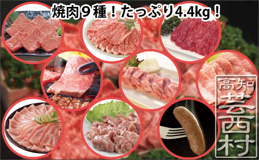 土佐の焼肉特大袋4.4kg 牛肉 豚肉 鶏肉 ソーセージ