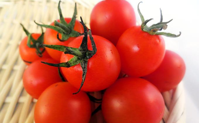 有機農産物 ミニ トマト(150g)×10パック