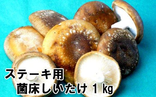 【四国一小さな町の菌床椎茸】ステーキ用菌床椎茸1kg