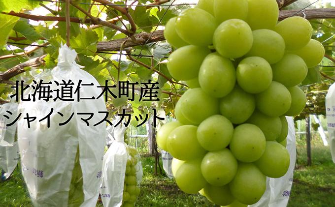 北海道仁木町産【厳選】シャインマスカット<一房詰め>