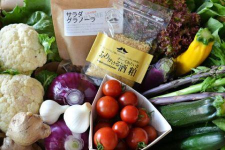 朝どれ野菜のサラダ便