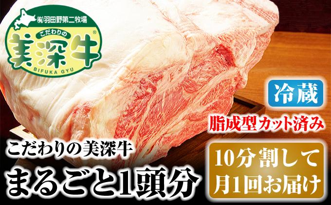 北海道 こだわりの美深牛1頭分(冷凍)10分割して月1回お届け