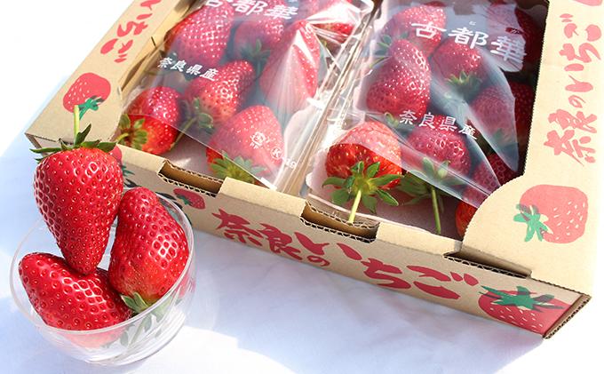 奈良県産ブランドいちご『古都華』 1箱(2パック)