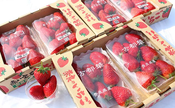 奈良県産いちご『古都華』『あすかルビー』3箱(各3パック)