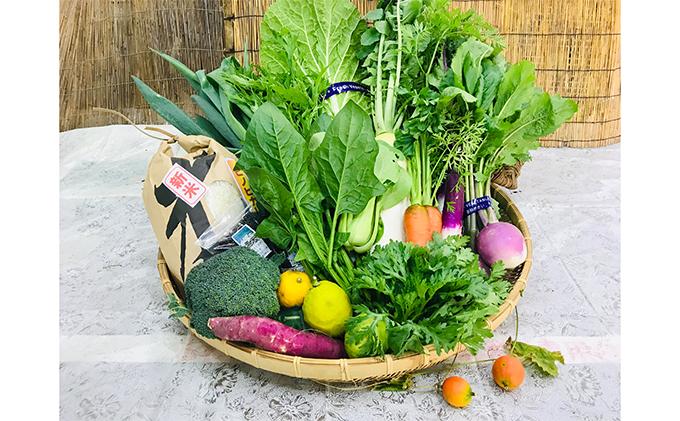 産地直送!新鮮とれたて季節の旬野菜&ひのひかり5Kgセット