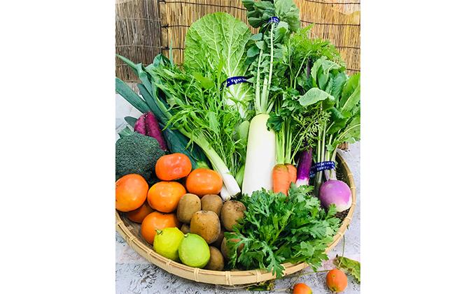産地直送!新鮮とれたて季節の旬野菜&フルーツセット